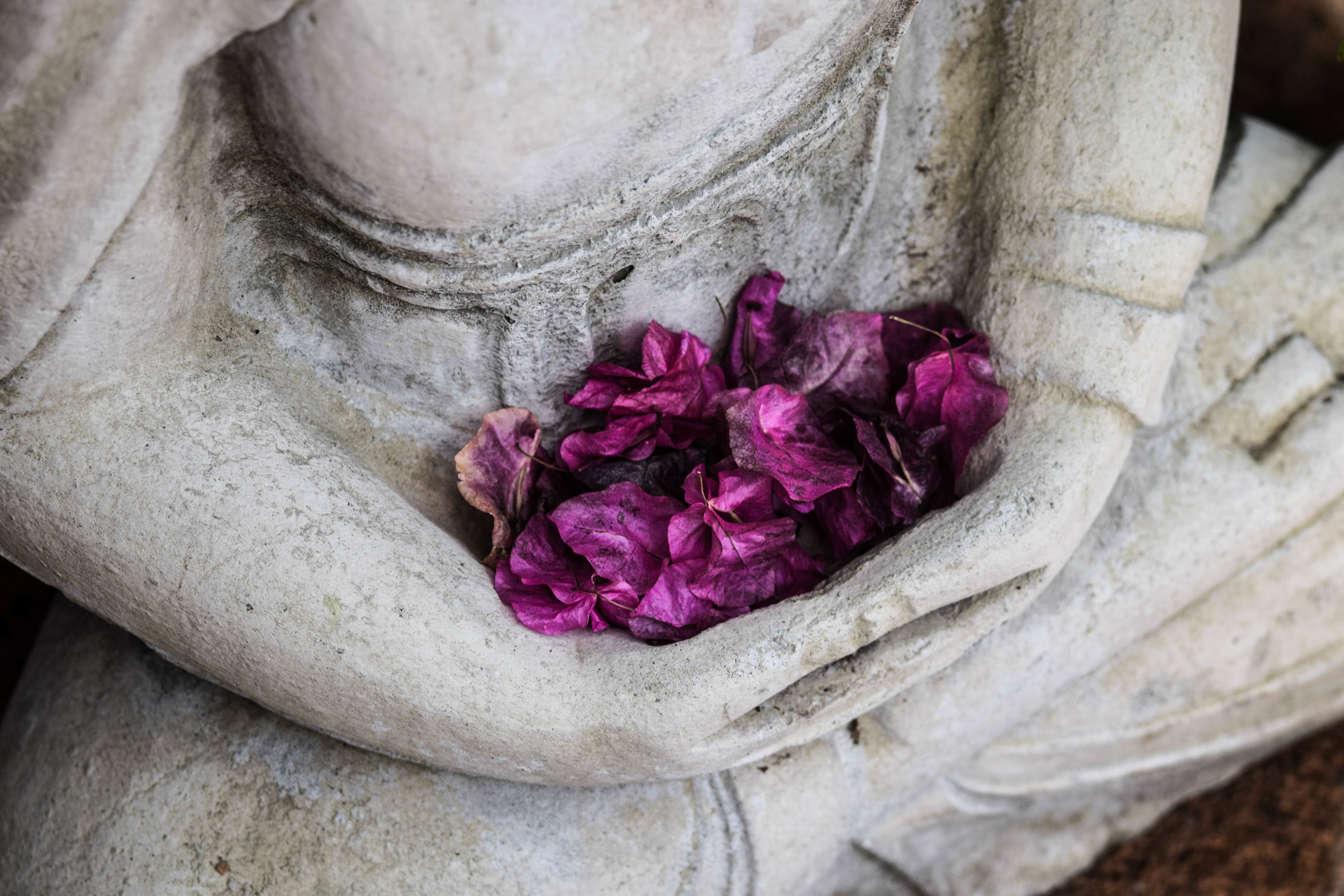 buddha statute with flowers in his lap